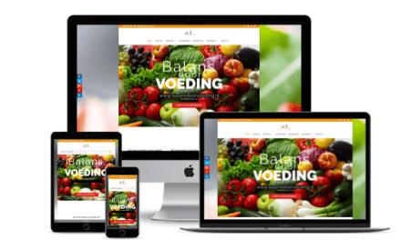 Nieuwe website voor BalansdoorVoeding.nl