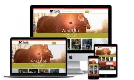 Website voor AMABLE, Paard en Inzicht