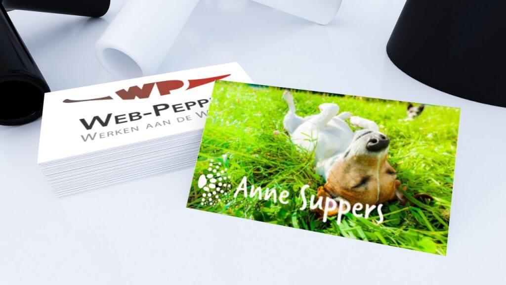 """Anne Suppers over """"Werken aan de Winkel"""""""